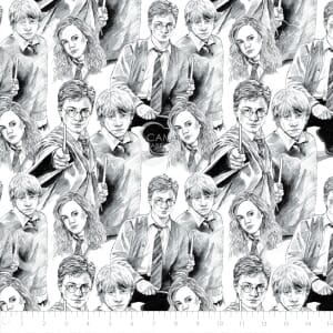 Harry Potter Sketch Quilting Fabric