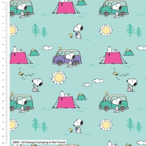 Snoopy And Woodstcks Adventure Camping