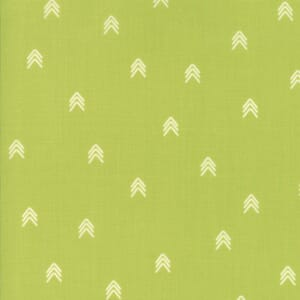 Small Image of Moda Fabric Creekside Compass Pistachio