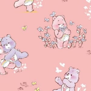 Care Bear Cheer and Share Bear Pink