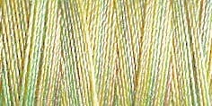 Small Image of Gutermann Sulky Variegated Cotton Thread 30 300M Colour 4012
