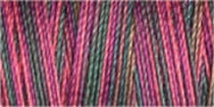 Small Image of Gutermann Sulky Variegated Cotton Thread 30 300M Colour 4039