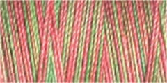 Small Image of Gutermann Sulky Variegated Cotton Thread 30 300M Colour 4122