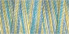 Small Image of Gutermann Sulky Variegated Cotton Thread 30 300M Colour 4125