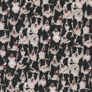 Makower Border Collie Dogs Fabric