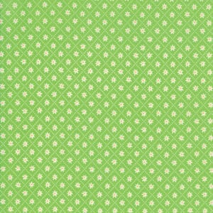 Moda Fabric Sunday Picnic Daisy Check Green