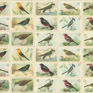 Large Image of the Moda Outdoorsy Bird Cards Natural Fabric 7383 11