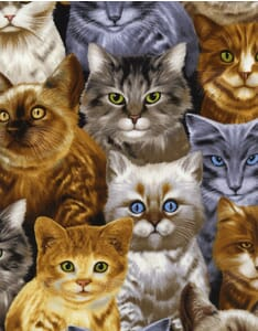 Small Image of Timeless Treasures Patchwork Fabric Crowded Cats